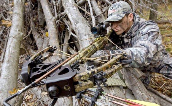Арбалеты - рейтинг охотничьих